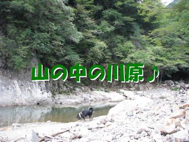 Img_0263kawara