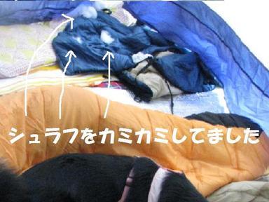 Img_0291nebukuro_2