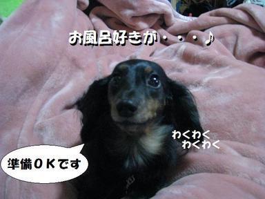 Img_0434hurosuki