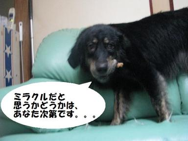 Img_0326anatashidai