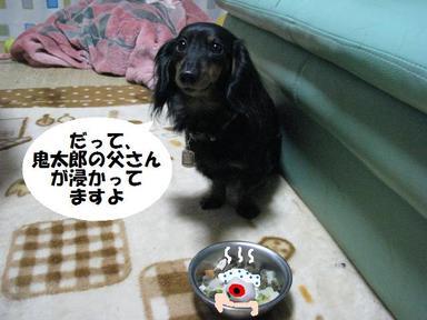 Img_1509oikitaro