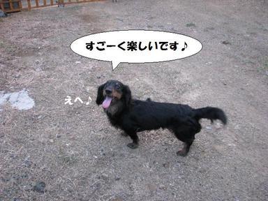 Img_5850sugokutanoshi_2