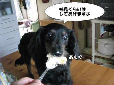 Img_6064ajimi1