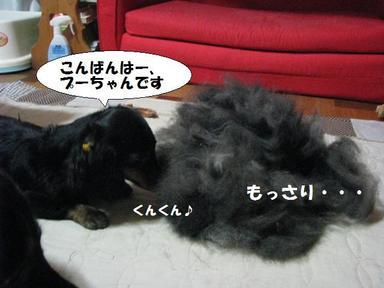Img_6459okekenigoaisatu