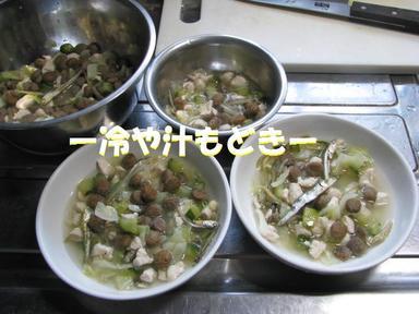 Img_6820hiyajiru