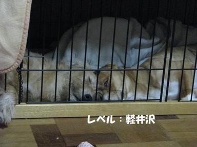 Img_6573karuizawa