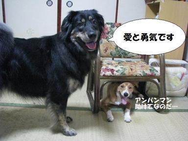 Img_6519aitoyuki_2