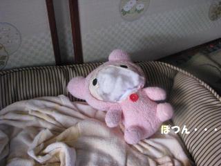 Img_7170kumachan