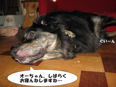 Img_7279ochitemasuochan