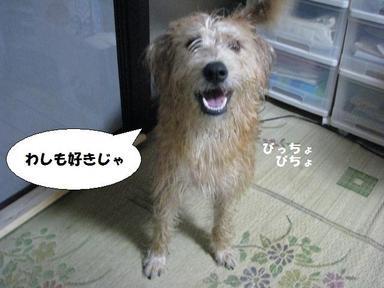 Img_7554furosukichar