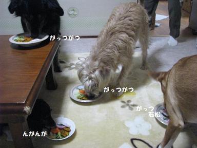 Img_8634kanshoku