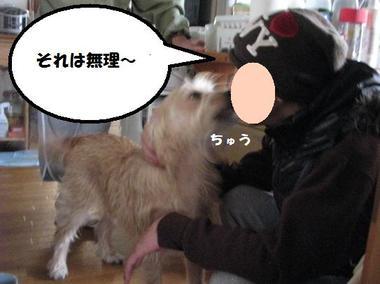 Img_8604tomochan3