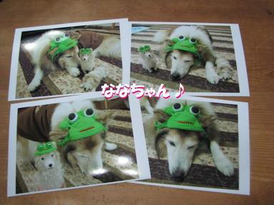Img_8985nanachan