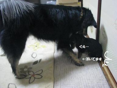 Img_9912ichidaijija