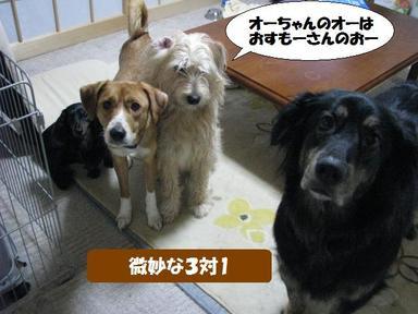 Img_0346nishihigashi