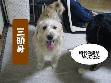 Img_0416kanchigaidesu