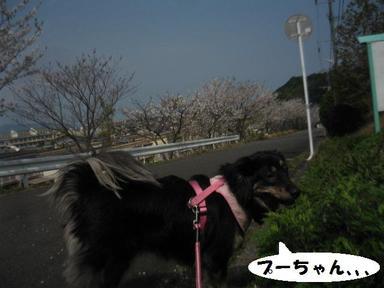 Img_3564
