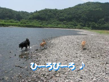 Img_0762hirobiro