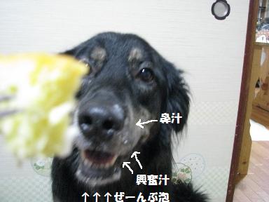 Img_1088awawawawa