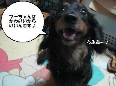 Img_1188atashikawaiikara