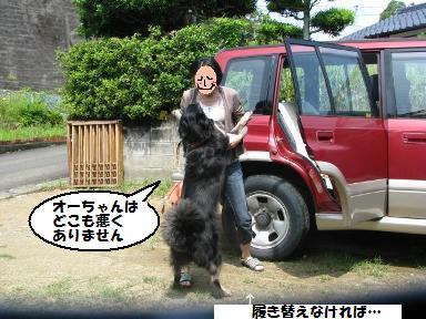 Img_1304oyako_3