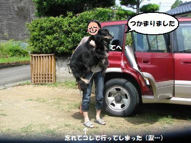 Img_1306oyako3