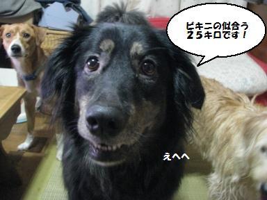 Img_1361kokuhaku