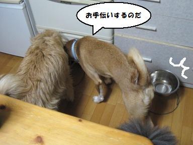 Img_1582otetsudai