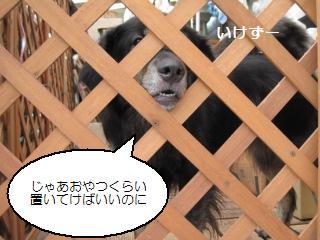 Img_1947oyatsuchoudai