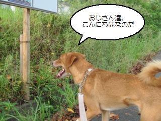 Img_2160goaisatsu