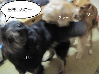 Img_2132sanrenchan_2