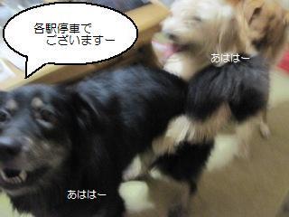 Img_2133sanrenchan