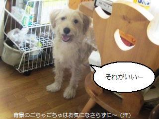 Img_2414soushiro