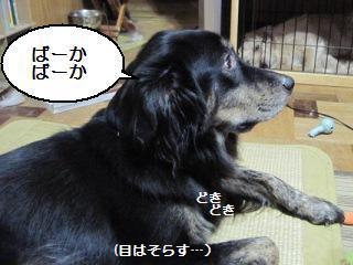 Img_2485mewasorasu