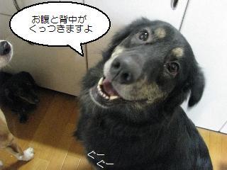 Img_1834matsu
