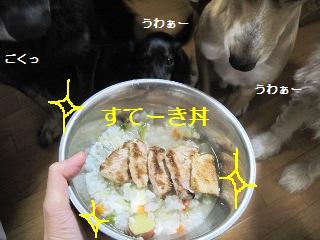 Img_2997suteki