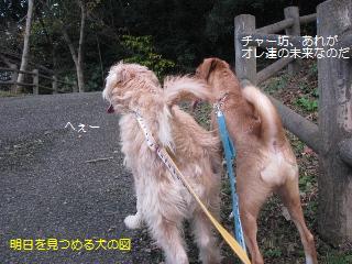 Img_3049asuwomitsumeru