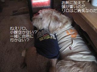 Img_2931nakayoshi