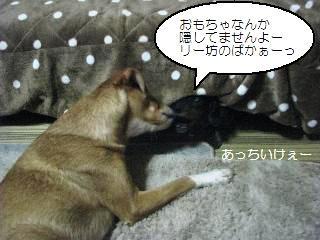 Img_3196nakayoshi