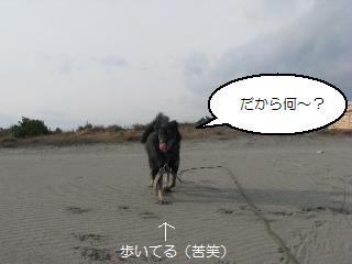 Img_3259mata