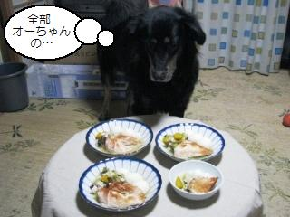 Img_3423zenbutaberu
