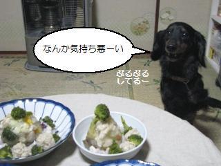 Img_3477kimochiwarui
