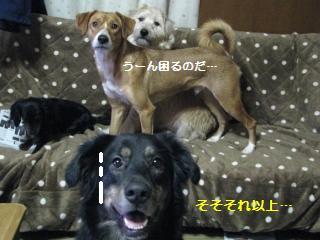 Img_3600moujuubunjan