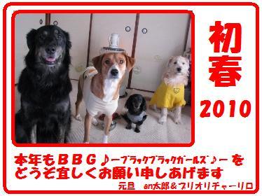 Img_3633daishi