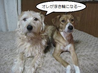 Img_3989zakiyamaka