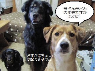 Img_4358nakayoshi